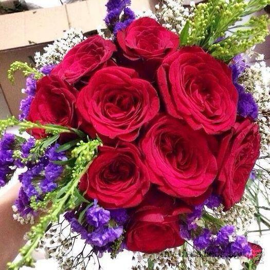 Valentine's Day Bouquets for sale ( 9 / 12 / 24 / 50 / 99 roses)