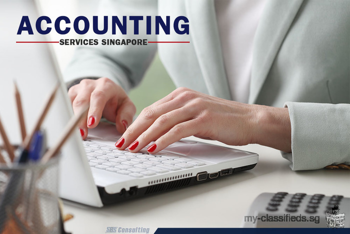 Appoint a Professional Accounting Services Singapore and Build Your Business Better