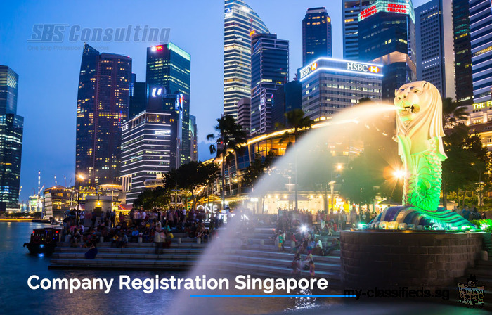 Before Company Registration Singapore invest in Business Model first