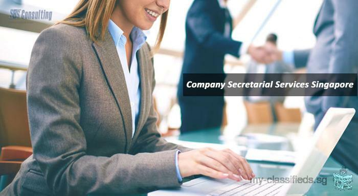 Hire Cost Effective Company Secretarial Services Singapore