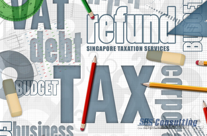 Hire Qualified Singapore Taxation Services Experts