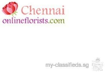 Special Cakes for Delivery in Chennai