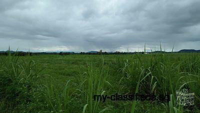 ขายที่ดิน แปลงใหญ่ มาก เหมาะขึ้นโครงการใหญ่ อำเภอท่าม่วง กาญจนบุรี